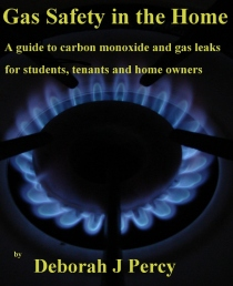 Gas Safety In the Home ebook by D Percy