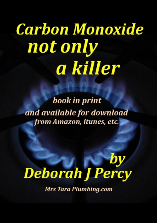 Book about carbon monoxide - publicity leaflet in production as I type